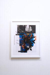 Butterfly view Takashi Kondo