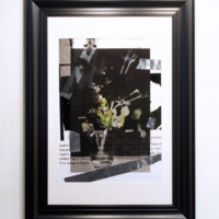 portrait(flower) Takashi Kondo