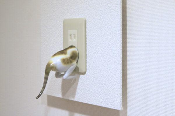 猫はワープする(伏せ・入) Koji Okuda