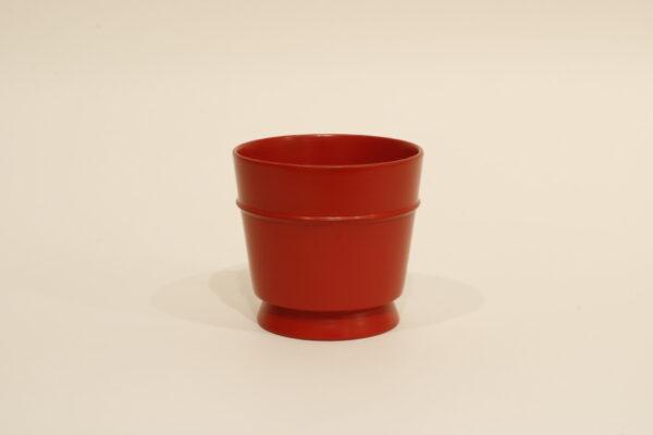 豆子カップ 伊藤惠