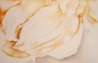 Mature Mayumi Yamae Kouichi Fine Arts アートギャラリー 大阪