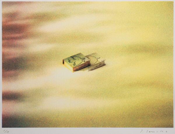ピカソから鳩 Takashi Tanaka