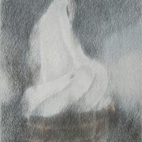 Soft Hiroaki Hamada