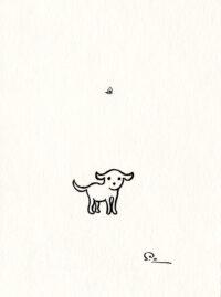 Confused Dog Shinji Ogawa