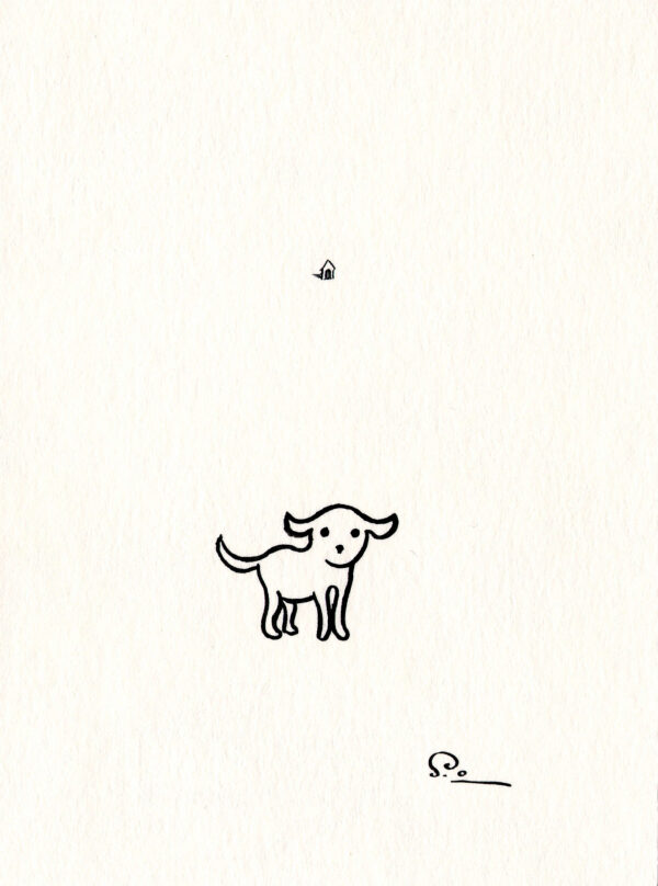 Confused Dog Shinji Ogawa