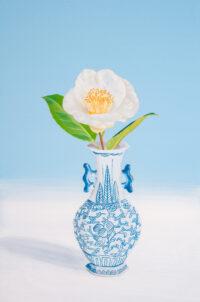 SHIROTSUBAKI Mari Kuroda Kouichi Fine Arts art gallery osaka