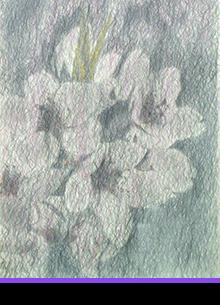 KOUICHI FINE ARTS Artists Hiroaki Hamada profile