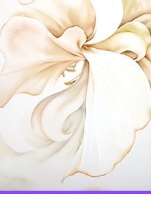 KOUICHI FINE ARTS Artists Mayumi Yamae profile